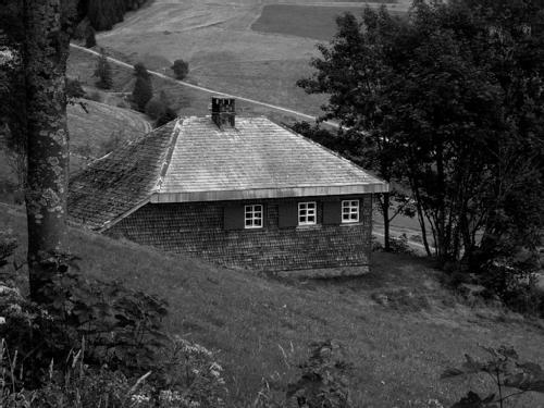cabaña4_Heidegger