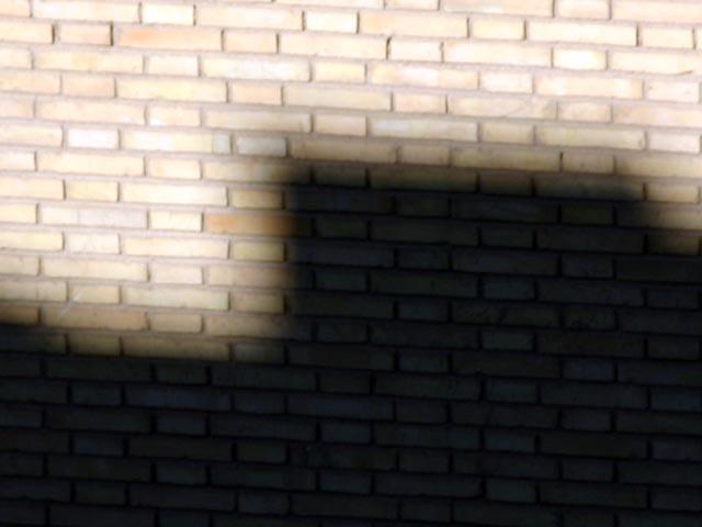 sombra1[1]